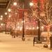 【2015 年版クリスマスまとめ】一層高まる!今年は『和装クリスマス』で決まり★