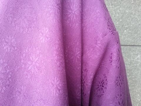 かんちゃんのblog:貝紫染めのきもの (3367)