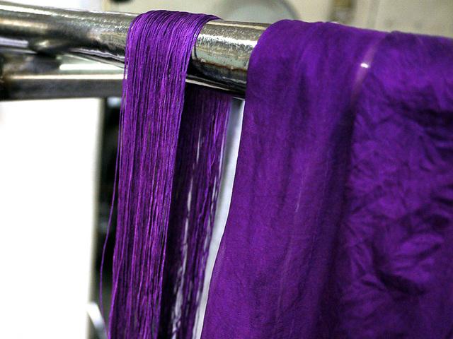 帝王紫の艶 貝紫染めの世界 FRIVOLITE (3368)