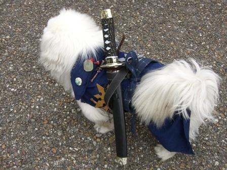 侍犬現る!: ラ ローズ ブル (4773)