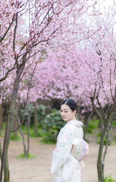 春の花と言えば…桜!